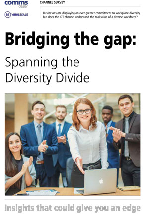 bridging-the-gap-spanning-the-diversity-divide-cover.jpg